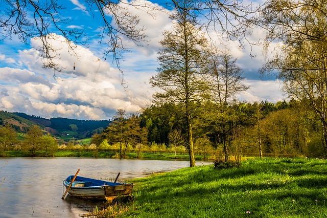 森の池のボート
