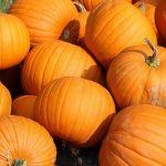 でかかぼちゃ