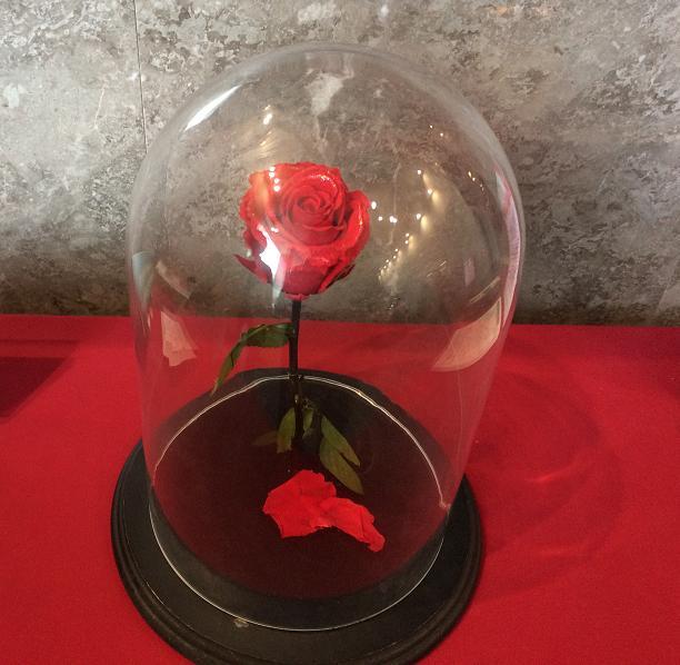 美女と野獣の薔薇