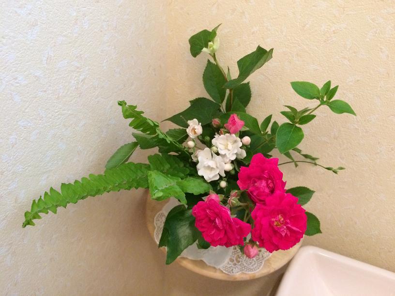 つるバラのトイレの花