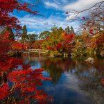 京都紅葉の庭園