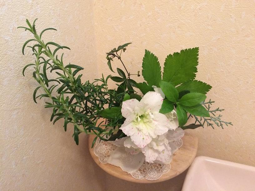 アザレアのトイレの花