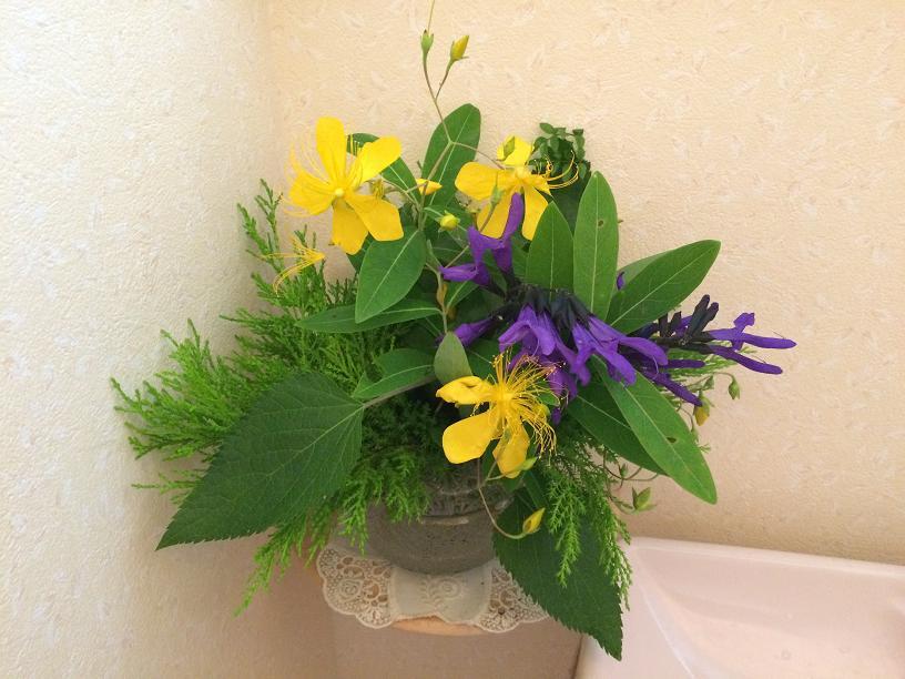 ブルーセージのトイレの花