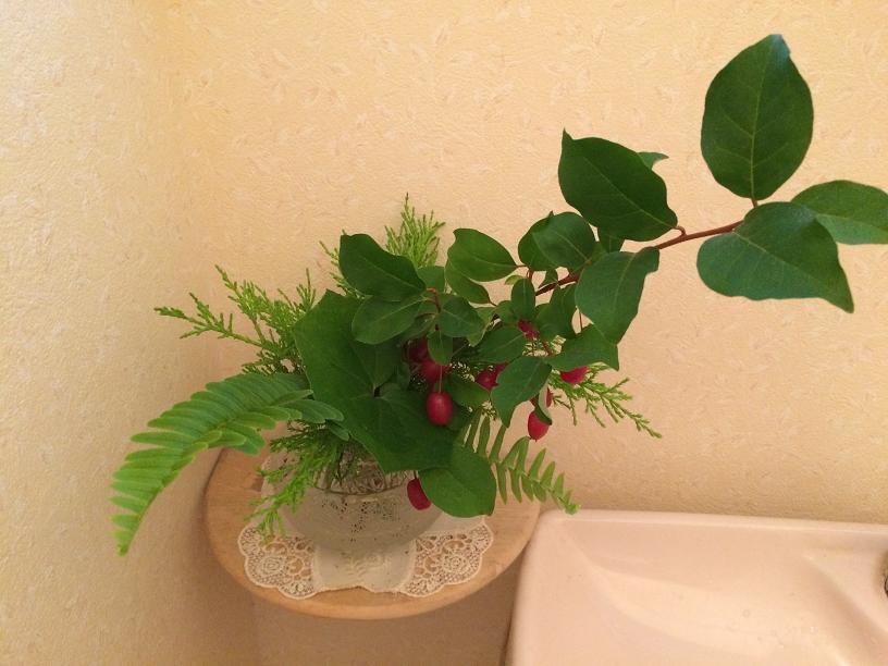 グミの木とグリーンのトイレの花