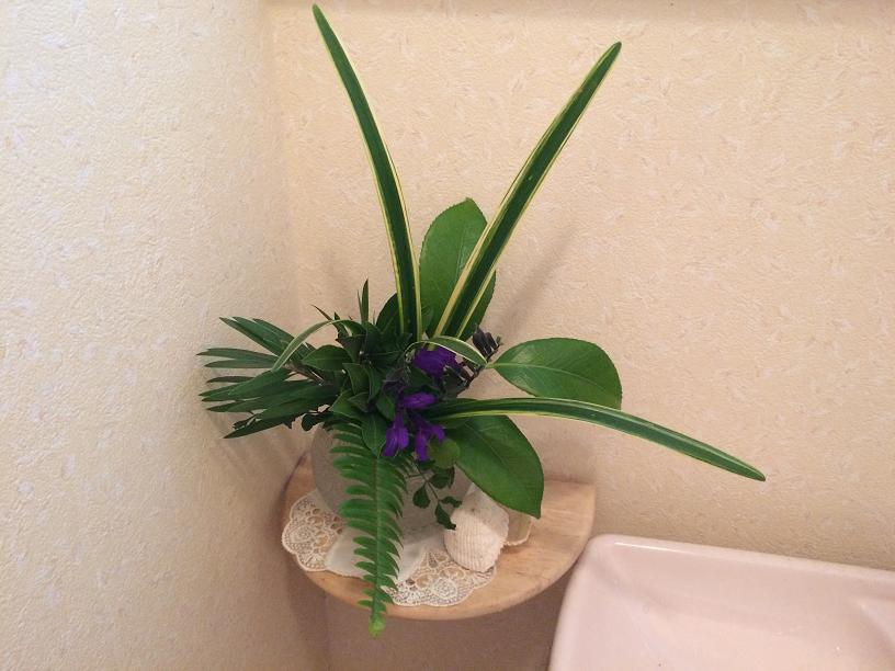 グリーンのトイレの花