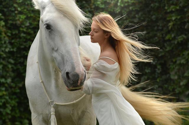 白馬と美女