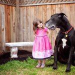 大きな犬と少女