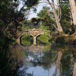 森の中の石橋