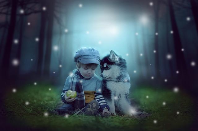 森の中の犬と子供