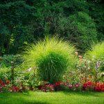 グリーンの庭