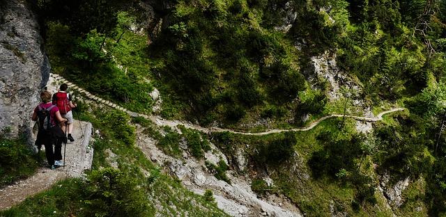 山の細い道