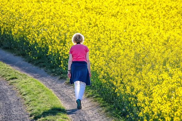 菜の花畑を散歩