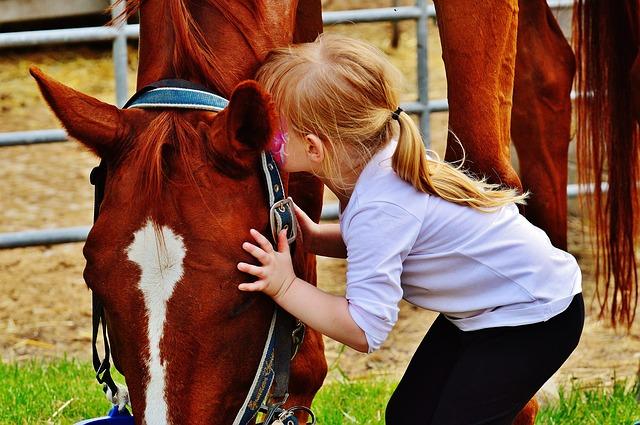 女の子と馬