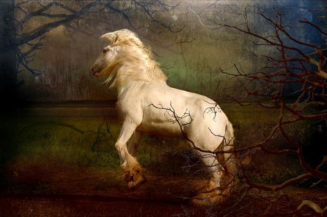 森の中の白馬