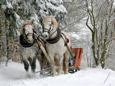 雪の中の馬車