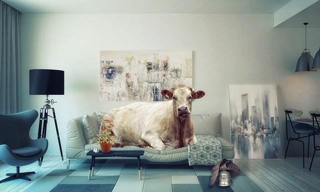 ソファーの牛